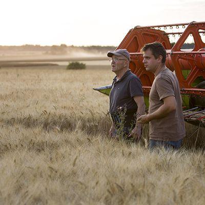 Transmission d'exploitation agricole : comment préparer les 273.000 départs d'ici dix ans ?