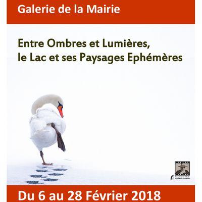 Galerie de la Mairie : Exposition du 6 au 28 février