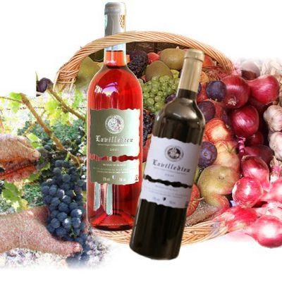 Osez un vin de Lavilledieu rouge et poulet rôti au confit de citron à la broche