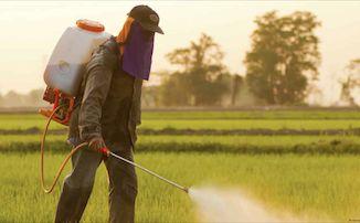 Glyphosate: 81% des français estiment qu'il faut interdire l'herbicide