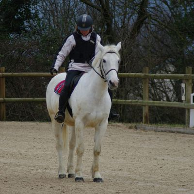 Dressage au St Eynard (part1)