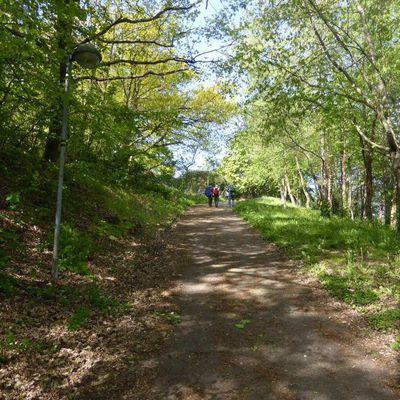 Nouveauté : la Boucle verte de Saint-Étienne