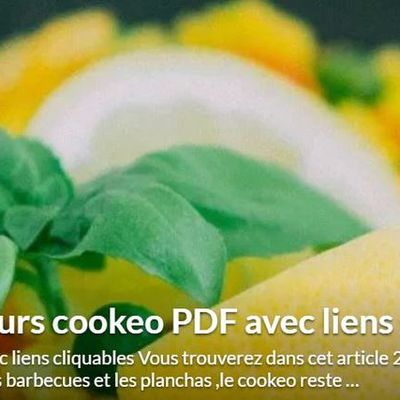 200 recettes beaux jours cookeo PDF