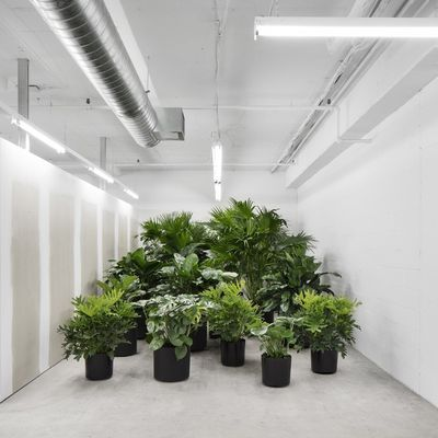 SSENSE HEADQUARTERS IN MONTREAL CANADA BY ATELIER BARDA ARCHITECTURE