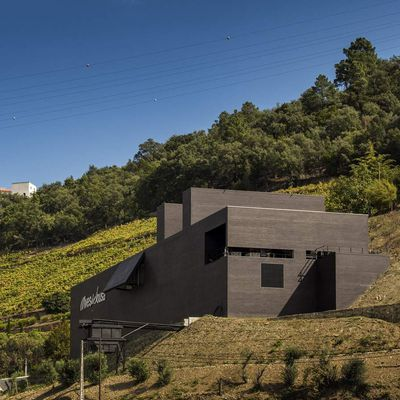 ALVES DE SOUSA WINERY IN PORTUGAL BY ANTONIO BELEM LIMA ARCHITECTS