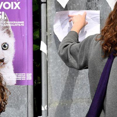 Le Parti Animaliste: votre voix pour nos amis les bêtes aux Européennes
