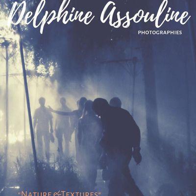 """Exposition """"Natures et Textures"""" du 13 avril au 1er mai inclus photographe Delphine ASSOULINE à la Maison du Jardin Botanique du Parc floral de Paris"""