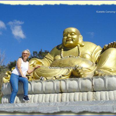#Buddha Eden #Garden-2 (P)