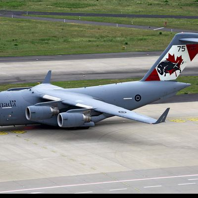 "Boeing C-17 ""Globemaster III"" - 429 Transport Squadron (TS) ""Bison"" - 75 years"