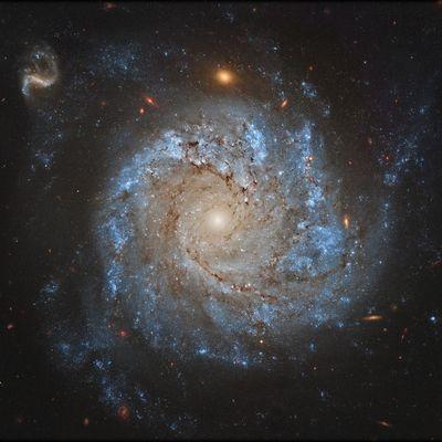 DE L'ASTRONOMIE : ciel lointain (7)
