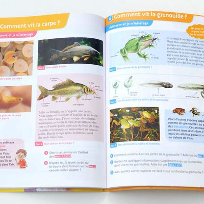 Nouvelle publication aux Editions Magnard : illustrations scientifiques naturalistes