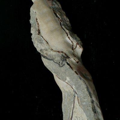 Rêve de pierre