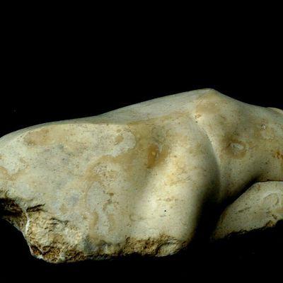 MAITRISER  -Trésor de garrigue © -435/1001