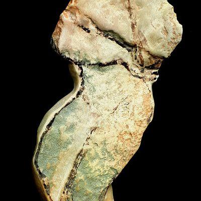 HOMME -Trésor de garrigues © -789/1001