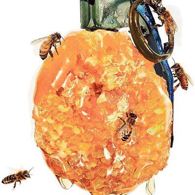 Ce que les abeilles murmurent à l'oreille des humains