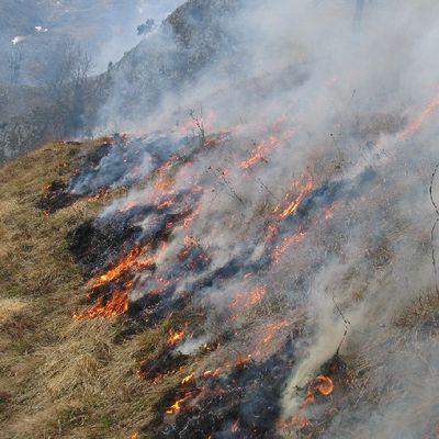 Oloron : Pollution Atmosphérique, les écobuages interdits du 22 février 2019 jusqu'à nouvel ordre