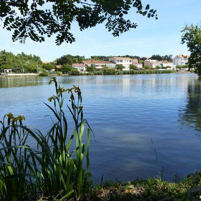 Promenade autour du lac du Tanchet