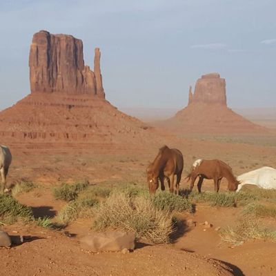 Jour 7 - Monument Valley
