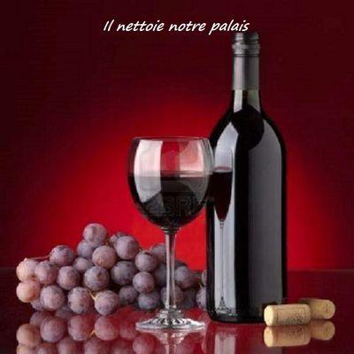 Connaissez-vous les bienfaits du vin rouge ? (suite)