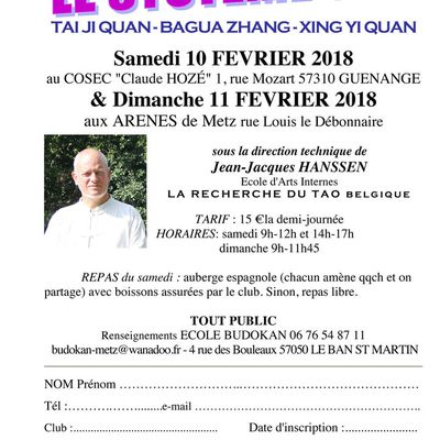 STAGE SYSTEME SUN Tai chi/Bagua/Xing Yi, les 10 et 11 février 2018