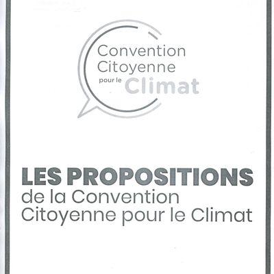 Quelle action politique pour la transition écologique ?