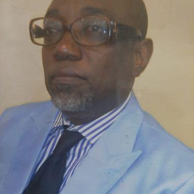 LA COUR CONSTITUTIONNELLE DOIT REJETER LA REQUÊTEDES PARTIS  POLITIQUES DE L'OPPOSITION CENTRAFRICAINE