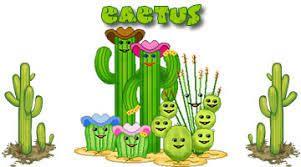 Cactus Sampler - FIN
