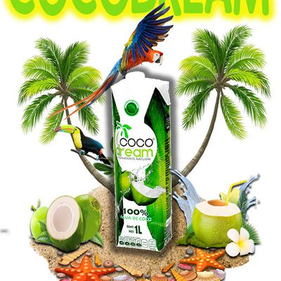 Primavera Coco Dream