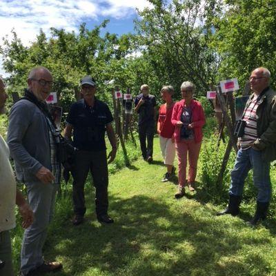 Retour sur notre participation aux journées des jardins sans pesticides organisées par le CPIE les 16 et 17 juin.