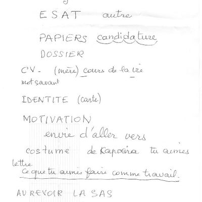 "Lettre de Motivation : ""dette son"" Yann trisomique"