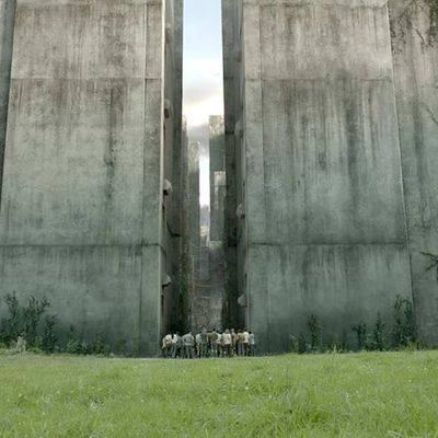 Le Labyrinthe (The Maze Runner - Wes Ball, 2014)