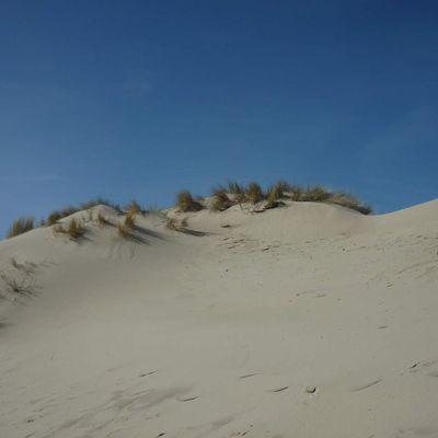 Les Dunes de la Mollière d'Aval
