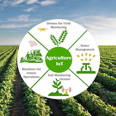 Improve Agriculture Productivity With IoT