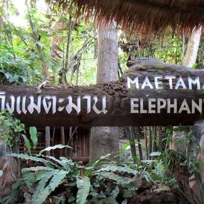 CHIANG MAI : MAETAMAN ELEPHANT CAMP