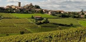 #Beaujolais Village Producers France Page 4