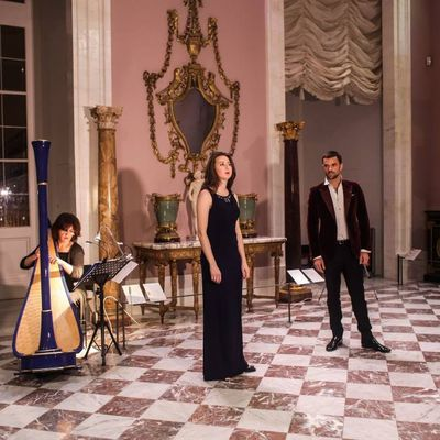 Playing for Pierre Frey at the Louvre