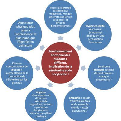 Les personnes à haut potentiel ont un mode de fonctionnement hormonal différent  et influencent les recherches sur les maladies auto-immunes et syndromes inflammatoires