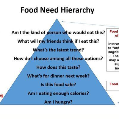 Pyramide des besoins, désaccords et politiques alimentaires