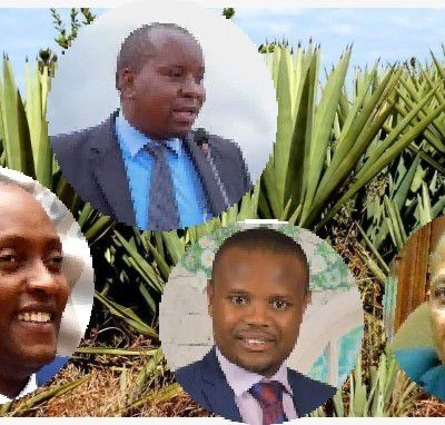 Outrage and intrigues in Sh4.8 billion Voi sisal land deal