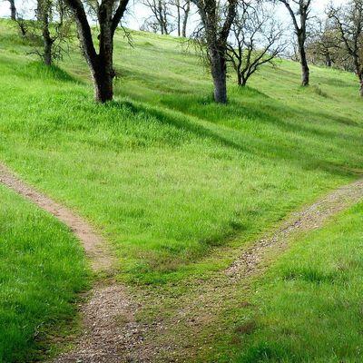 notre chemin, le chemin