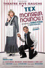 MONSIEUR NOUNOU au Théâtre Rive Gauche