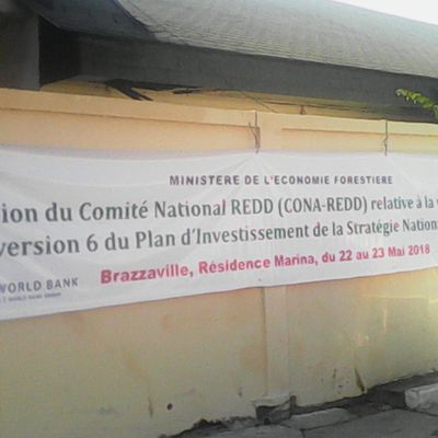 Réunion du Comité National REDD (CONA-REDD), relative à la validation de la version 6 du Plan d'Investissement de la Stratégie Nationale REDD+ en République du Congo.