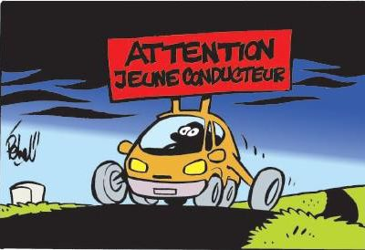 Conducteur novice à la Macif