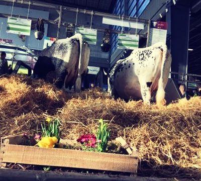 Une journée au salon de l'agriculture!