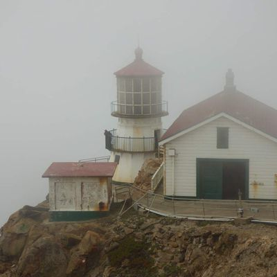 Road trip aux USA, étape 12 : Point Reyes
