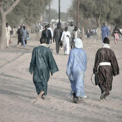 Mbacké Kadior: berceau du Mouridisme