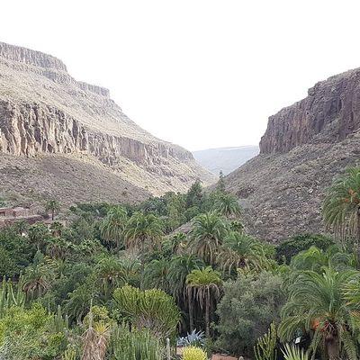 Que faire sur l'île de Gran Canaria ?