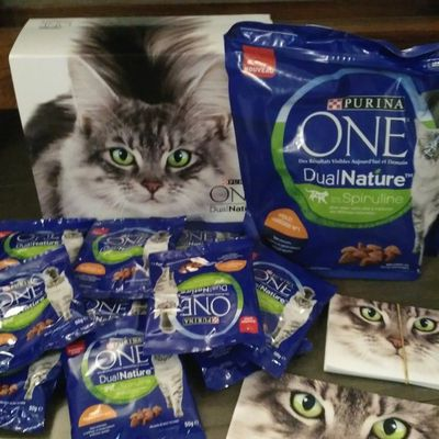 PURINA ONE® DualNature™