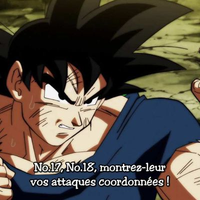 DRAGON BALL SUPER 117 VOSTFR HD