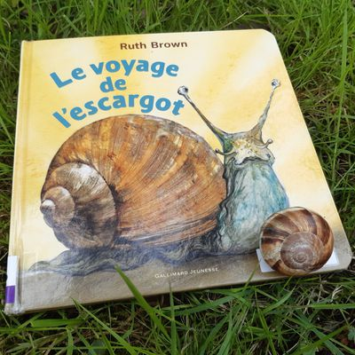 Le voyage de l'escargot de Ruth Brown